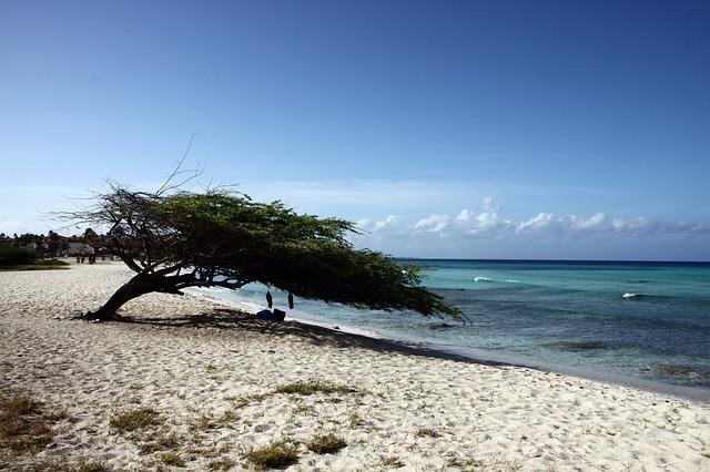 pláž aruba