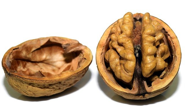 rozpůlený vlašský ořech